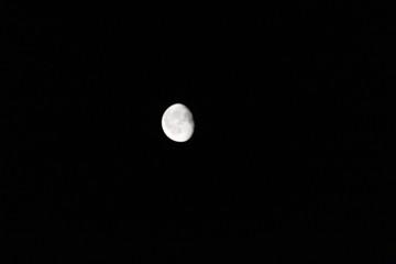 Isolated Moon