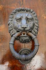 A substancial cast iron door knocker