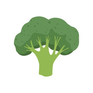 broccoli vector photos royalty free images graphics vectors videos adobe stock broccoli vector photos royalty free