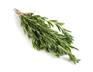 Fresh rosemary twigs tied with twine on white background