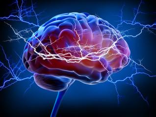 Gehirn - Energie - Intelligenz