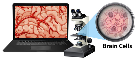 Close up of brain cells with mircoscope and laptop
