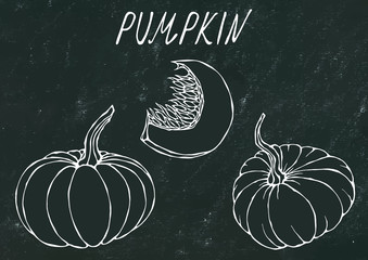 Black Board. Orange Pumpkin. Autumn or Fall Vegetable Harvest Collection. Realistic Hand Drawn High Quality Vector Illustration. Doodle Style.