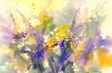 sunny meadow yellow and violet flowers watercolor background