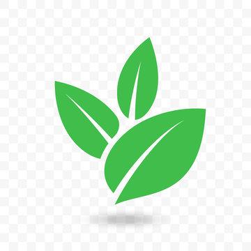 Green leaf vector icon for vegan, bio eco design