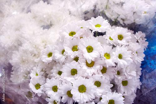 White chrysanthemums in a flower shop a bouquet of chrysanthemums white chrysanthemums in a flower shop a bouquet of chrysanthemums chrysanthemum flower white mightylinksfo