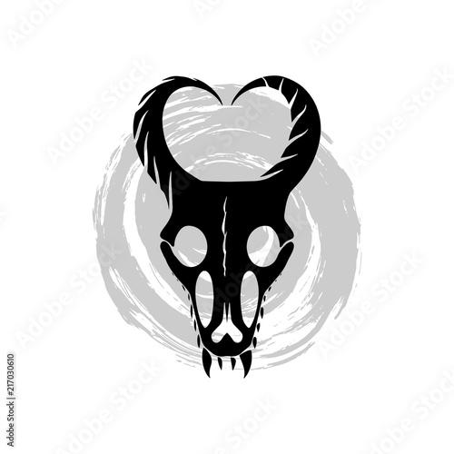 Skull vector illustrasion  Black and white dragon skull on