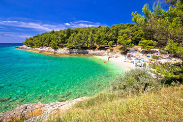 Idyllic turquoise beach in Pula summer view Wall mural