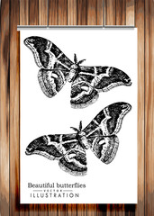 Poster with butterflies - vector image on wooden background