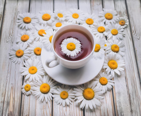 Cup of chamomile tea with fresh daisies and saucer. White fresh flowers on a light gray vintage wooden background. The concept of a sedative.