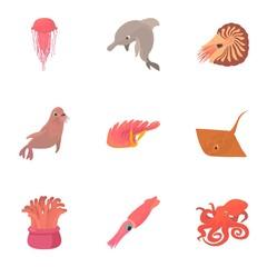Resident marine life icons set. Cartoon set of 9 resident marine life vector icons for web isolated on white background