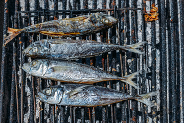 Grilled mackerel fish on the grill closeup