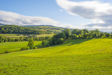 Hilly scenic landscape near Killarney in Ireland in summer