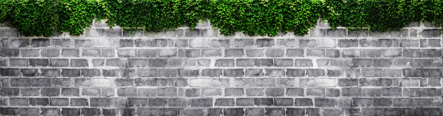 brick wall with green leaf, widescreen.