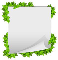 A green nature leaf frame
