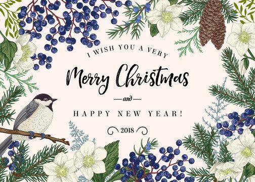 Christmas card with bird.