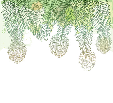 Vector branch with outline Sequoia or California redwood on the pastel green textured background. Bunch of coniferous tree with pine and cones in contour style for botanical design.