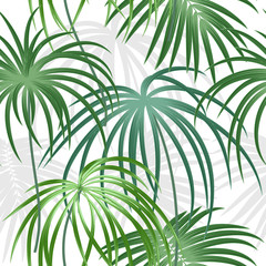 Tropical plant seamless pattern, tropical leaves of palm tree.