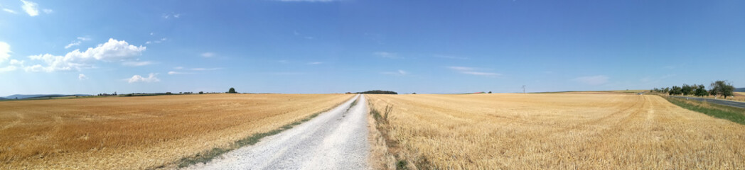 vertrocknete Felder Panorama
