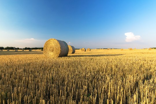 Summer country Field with Hay Bales and blue sky