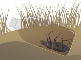 Концептуальная иллюстрация на тему загрязнения земли с изображением  лежащей на траве пластиковой бутылки и мёртвого жука внутри. Экология, защита окружающей среды, экологическая катастрофа.