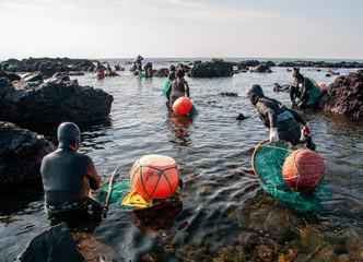磯を歩いて漁場へ向かう海女たち