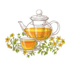 tutsan tea illustration