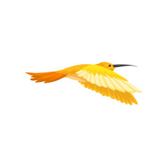 Gorgeous tropical hummingbird with bright yellow-orange feathers. Flying colibri. Small bird with long thin beak. Flat vector design