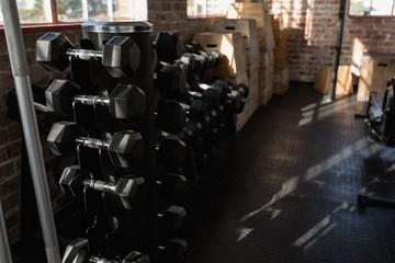 Dumbbells in the fitness studio