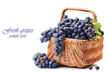 Basket of grapes on a white background