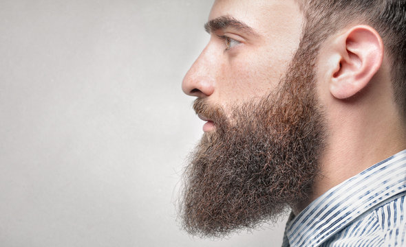 Close up of a handsome man with long beard