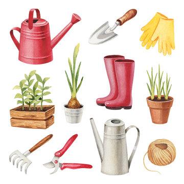 Watercolor illustrations of garden tools