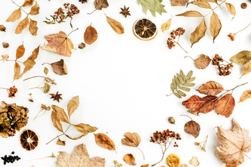 Frame of dry fall autumn leaves, petals and oranges on white background. Flat lay, top view seasonal concept.