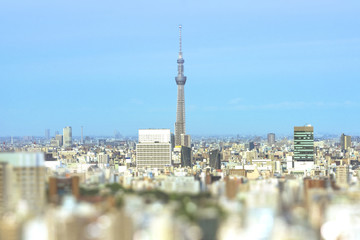 Aerial view in tilt-shift of the city of Tokyo with the skytree tower in the center.