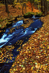 Mountain wood stream in an autumn forest