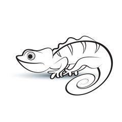 black outline chameleon on smooth shadow vector drawing