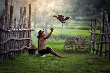 Asians in traditional Thai countryside in Asian daily life by blowing water to fight chicken
