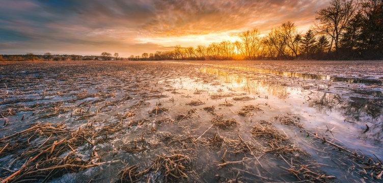 Frozen Soybean Farm Field at Sunset
