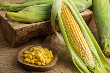 Fresh corn on the cob with leaves and grains in wooden ladle on sackcloth