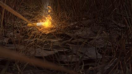 Zigarette auf trockenem Waldboden
