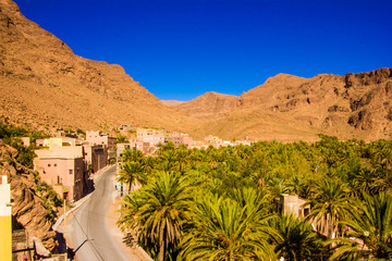 Beautiful landscape of palm oasis close to Tinghir, Morocco in Africa