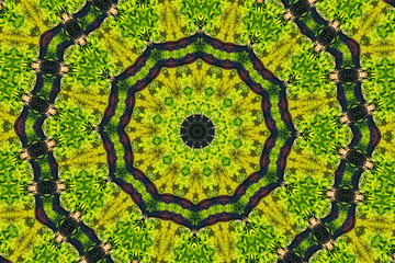 Abstract kaleidoscope pattern background