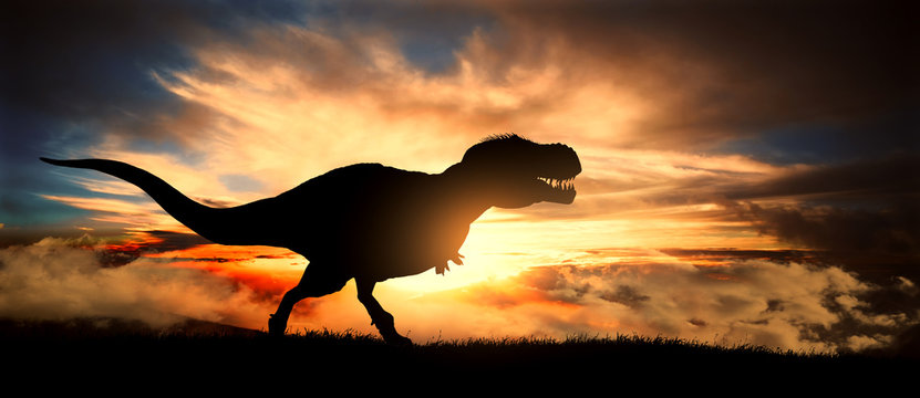 Silhouette of a tyrannosaurus rex at sunset
