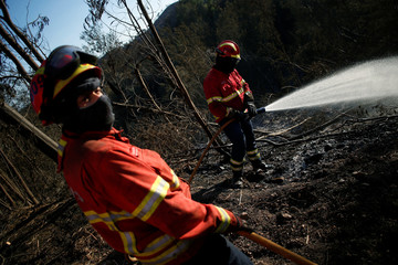 A firefighter drops water in the aftermath of the fire, next to a road between Monchique and Silves