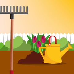 watering can rake and tulips flowers gardening vector illustration