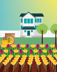 country house trees potting soil watering can and flowers garden vector illustration