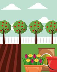 gardening apple trees flowers in pot potting soil and bucket vector illustration