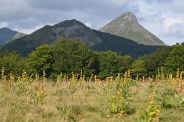 Puy de l'Usclade (au centre) et Griou (à droite), Auvergne, France