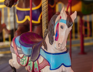 carousel horse smiles for you