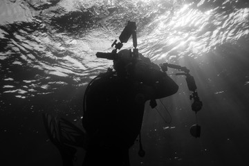 Silhouette of an underwater photographer diving in the waves at the surface of the Red Sea in Egypt